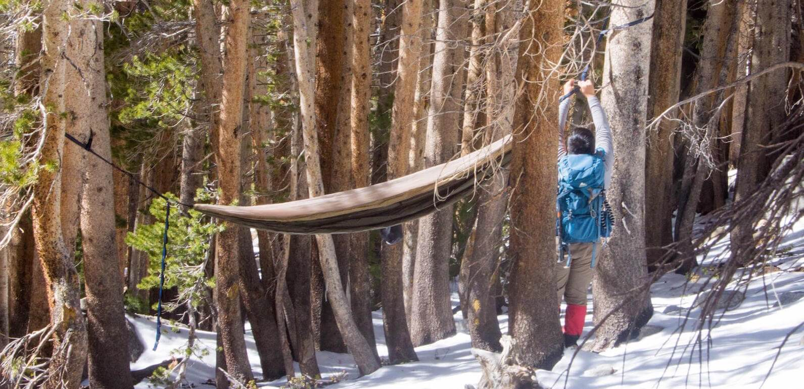 setting up a camping hammock on a backpacking trip